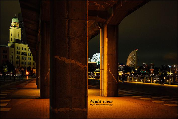 Night Walk_f0100215_23545696.jpg