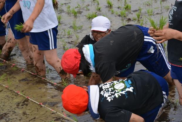 泥だらけの田植え体験!美味しいお米を作るのだ♪_c0259934_15211983.jpg