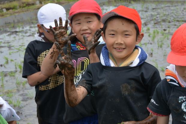 泥だらけの田植え体験!美味しいお米を作るのだ♪_c0259934_15212133.jpg
