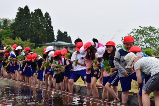 泥だらけの田植え体験!美味しいお米を作るのだ♪_c0259934_15212486.jpg