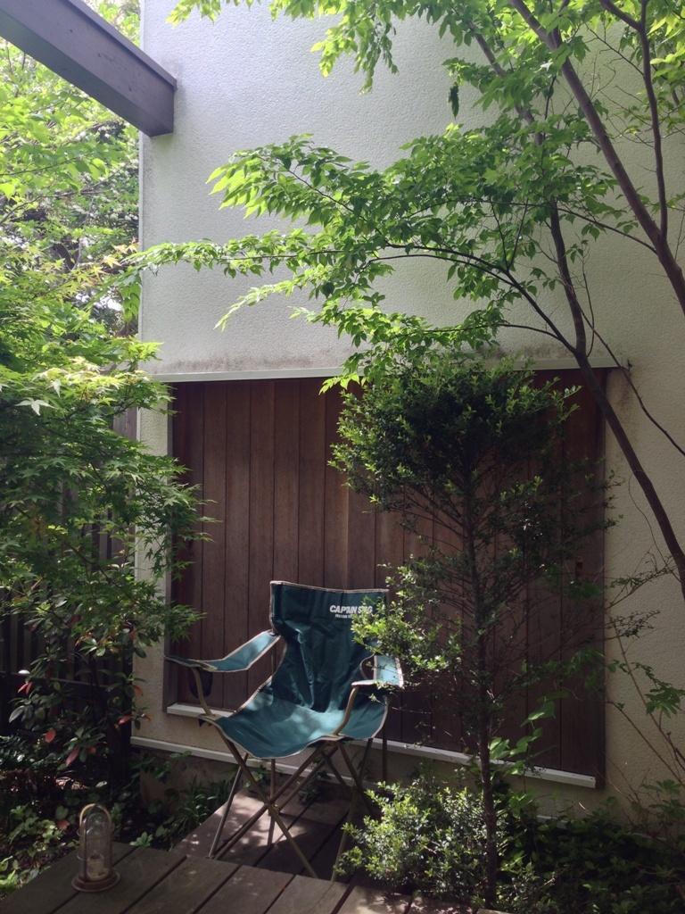 初夏の庭2016_c0310571_21340725.jpg