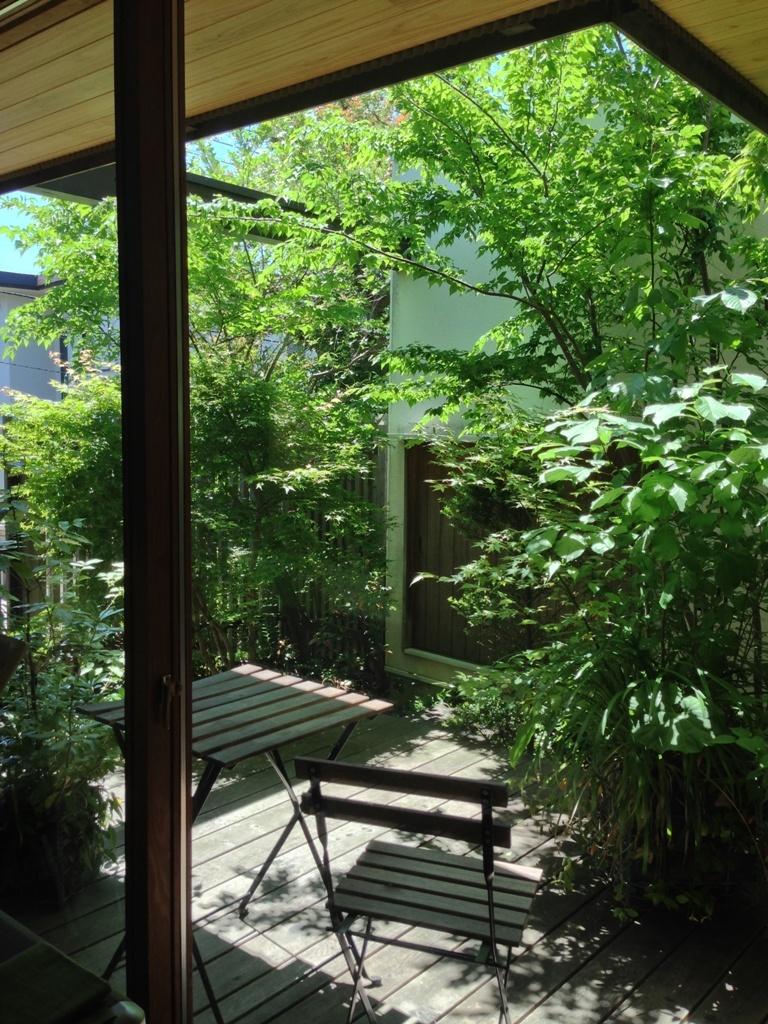 初夏の庭2016_c0310571_21342208.jpg