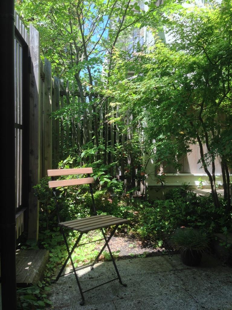 初夏の庭2016_c0310571_21342743.jpg