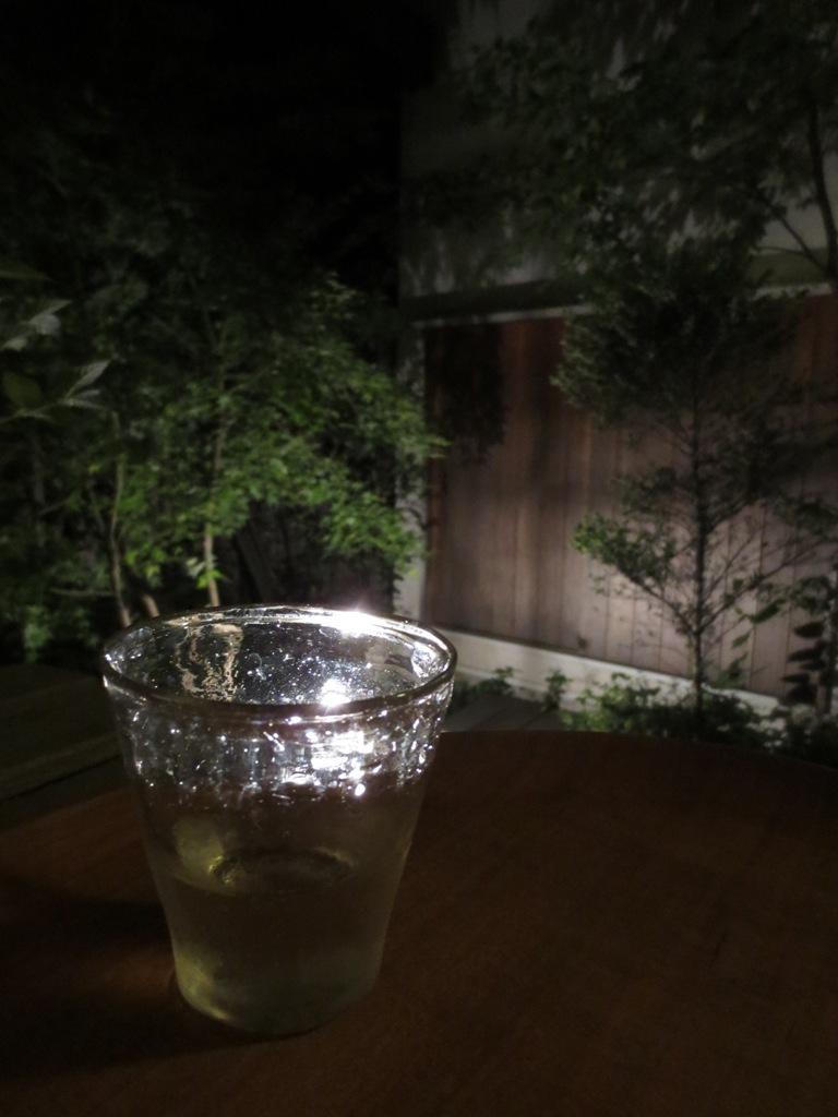 初夏の庭2016_c0310571_21342937.jpg