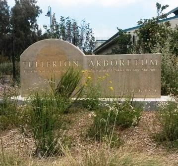 フラトン植物園の盆栽展_e0350971_14423855.jpg