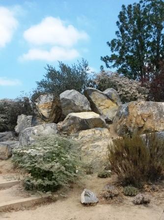 フラトン植物園の盆栽展_e0350971_14564377.jpg