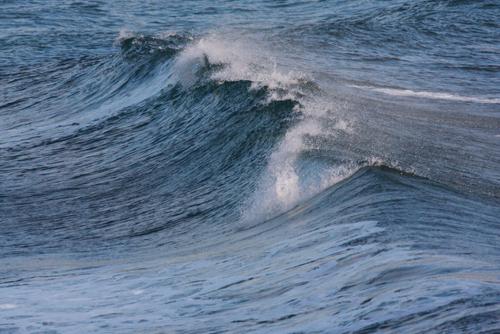 ...今日の波乗り..._b0176483_15412856.jpg