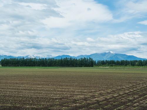 残雪の日高山脈と6月新緑の農村風景_f0276498_14370334.jpg