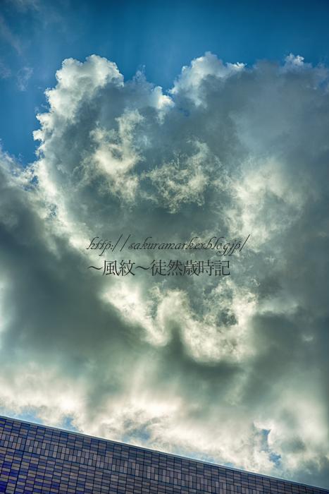 積乱雲発達中。_f0235723_19515764.jpg