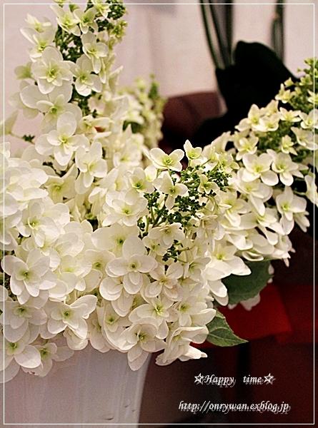 かにかま炒飯弁当と紫陽花の季節♪_f0348032_19140214.jpg