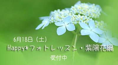 b0049843_16204076.jpg