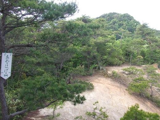 松江近郊のトレランコース⑤_d0007657_19425487.jpg