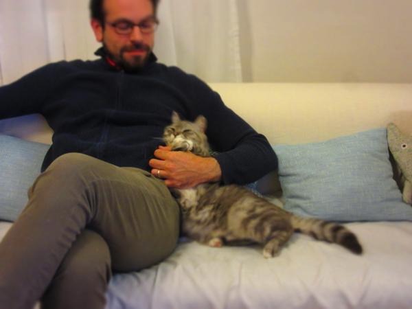イタ猫FUJIの大好きな時間ー見ているだけで幸せ時間_c0179785_534342.jpg