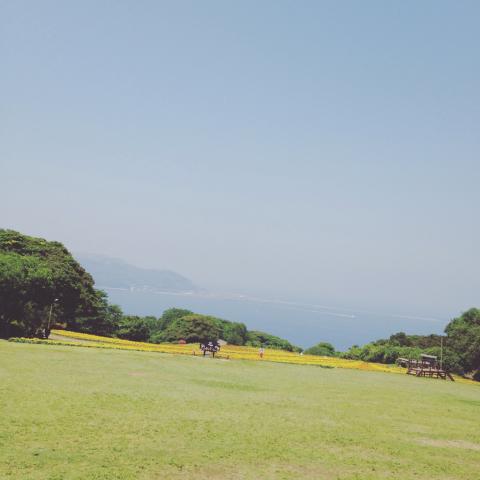 梅と能古島_e0330790_15464901.jpg