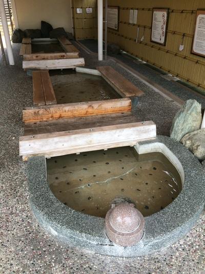 祇園祭り_a0165018_13581940.jpg