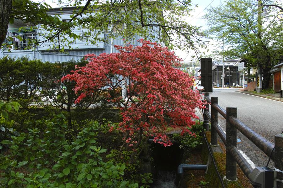 二本松市を歩く④~DP3も使いながら~_c0223825_00133925.jpg