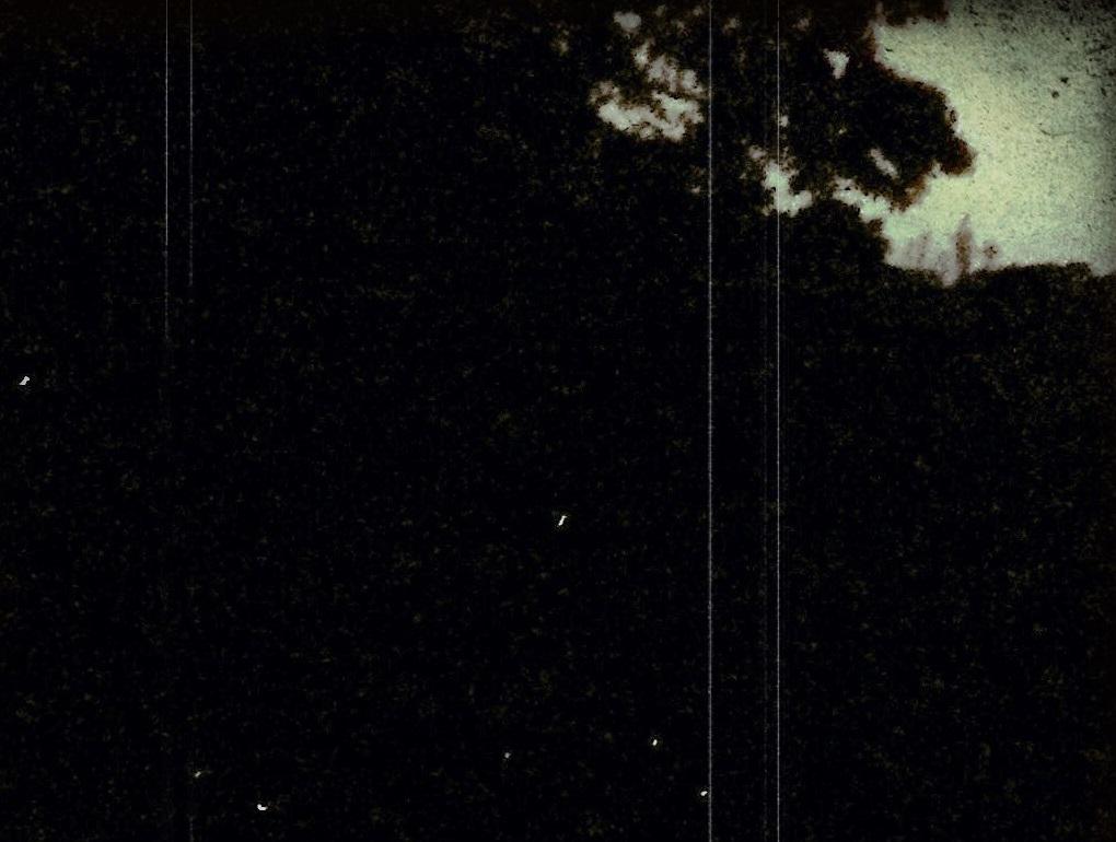 f0101679_0501924.jpg