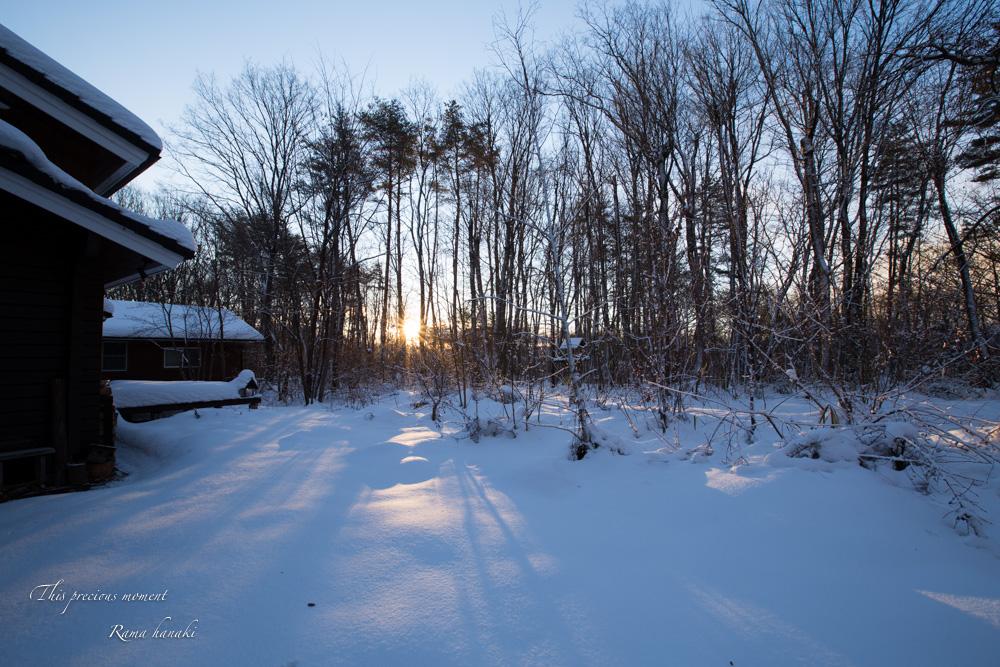 1月の風景_c0137403_1451931.jpg