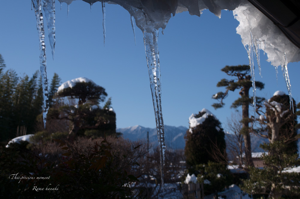 1月の風景_c0137403_14561819.jpg
