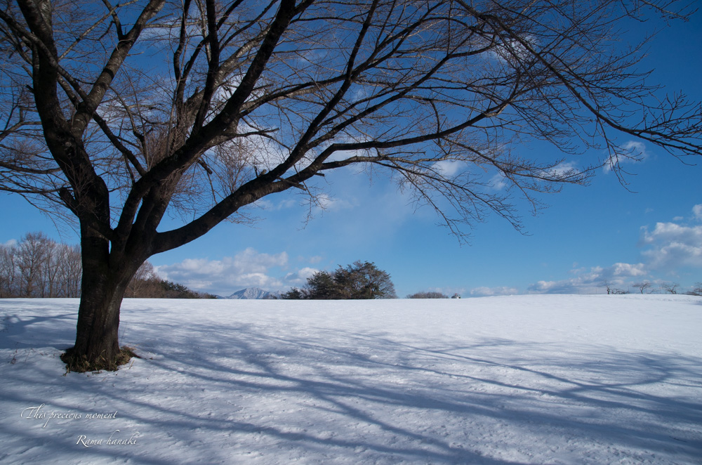1月の風景_c0137403_14562913.jpg