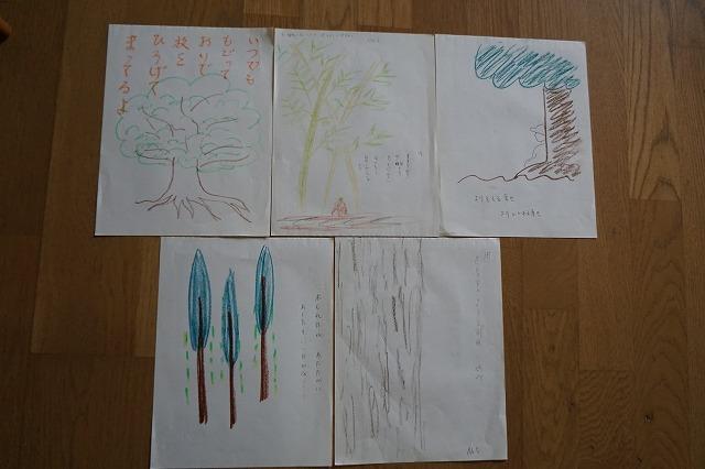 木の存在への感受性を高め、プランニングする力につなげる_d0260050_13193319.jpg