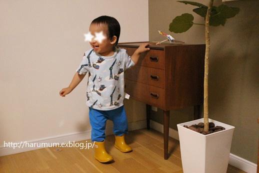 2歳おめでとう★_d0291758_23562065.jpg