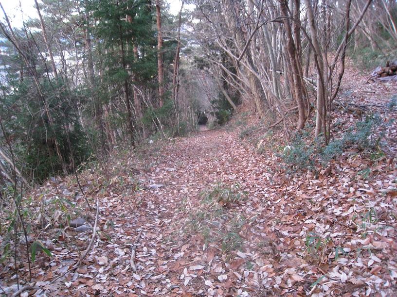 信夫山散歩情報の確かめ~信夫山の魅力と聖性の維持21_a0087378_817131.jpg
