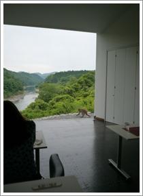 『立木音楽堂(カフェ)』さん_b0142989_187484.jpg