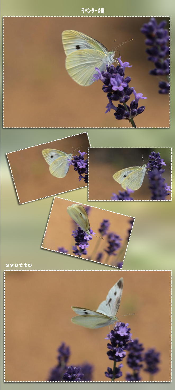 f0164592_18431998.jpg