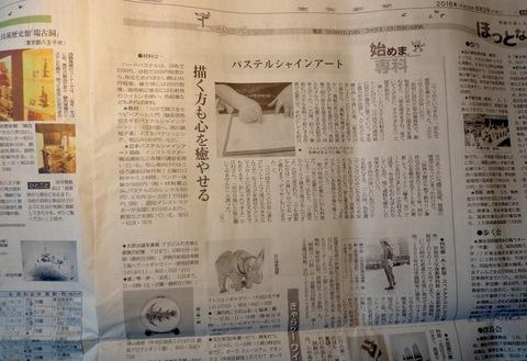 東京新聞にPSA記事掲載_f0071893_10462232.jpg