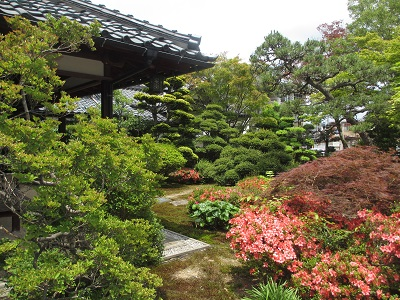 山中温泉・菖蒲湯祭と「雪垣」句会_f0289632_0105237.jpg