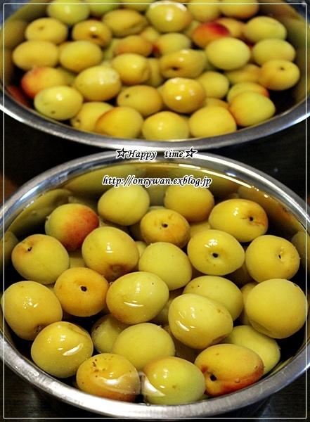 焼き鮭でおばんざい弁当と梅シゴト①♪_f0348032_19114316.jpg