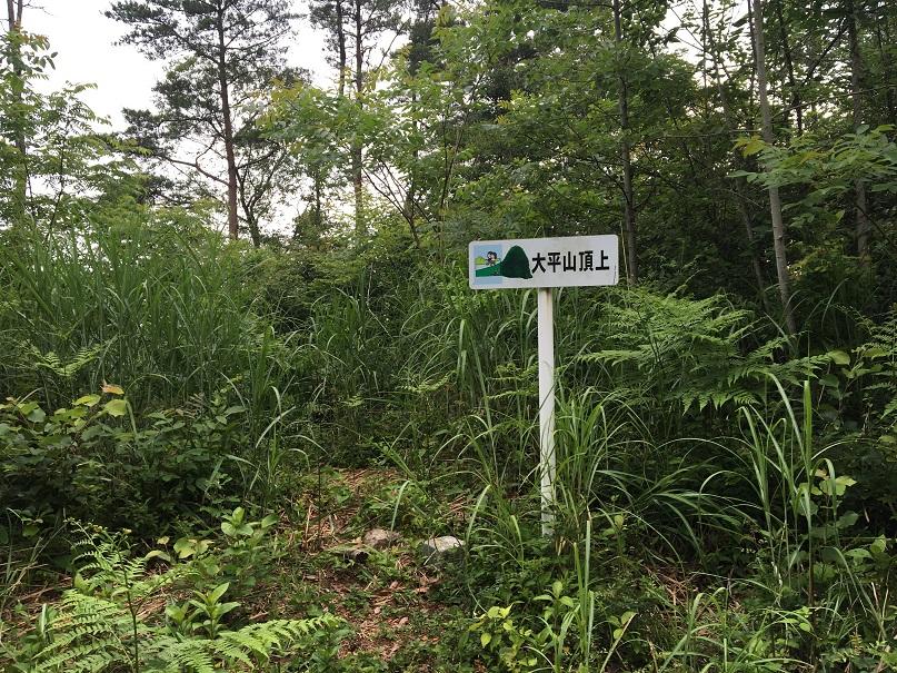 松江近郊のトレランコース⑥_d0007657_11541216.jpg