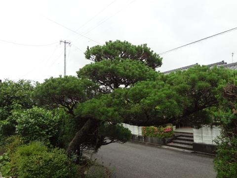 b0246869_201196.jpg
