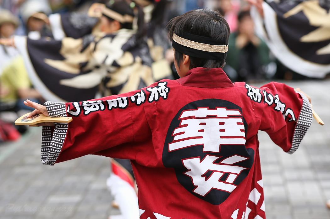 音羽華炎 @ 第13回犬山踊芸祭_c0187584_1042623.jpg