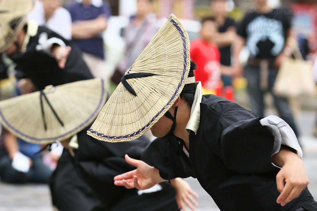 音羽華炎 @ 第13回犬山踊芸祭_c0187584_10431920.jpg