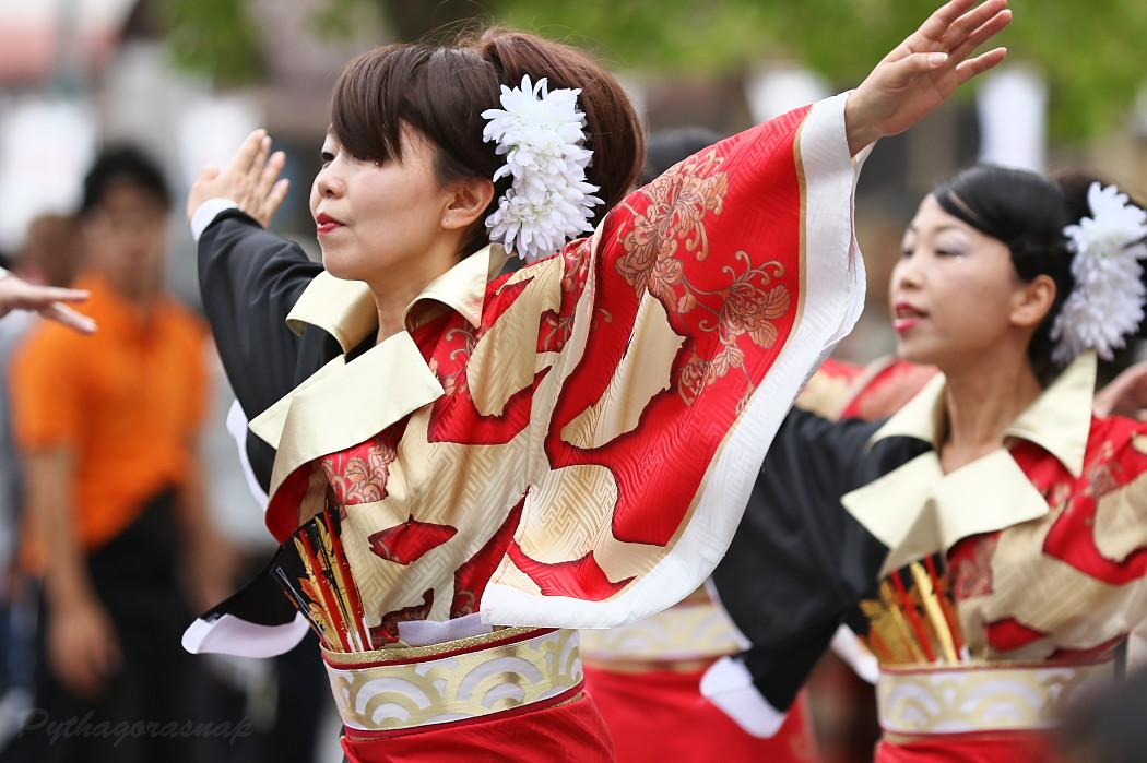 音羽華炎 @ 第13回犬山踊芸祭_c0187584_10442492.jpg