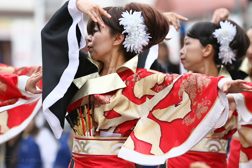 音羽華炎 @ 第13回犬山踊芸祭_c0187584_10445587.jpg