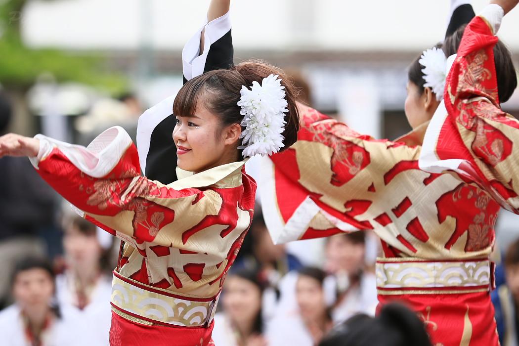 音羽華炎 @ 第13回犬山踊芸祭_c0187584_10451995.jpg
