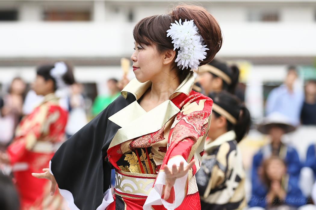 音羽華炎 @ 第13回犬山踊芸祭_c0187584_10473674.jpg