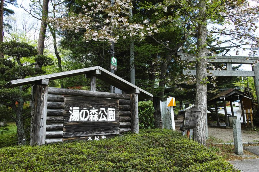 二本松市を歩く⑤~岳温泉神社を歩きながら~_c0223825_23455982.jpg
