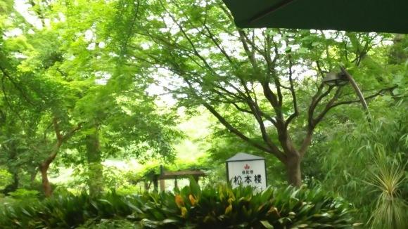 迎賓館 赤坂離宮_b0356852_16081855.jpg