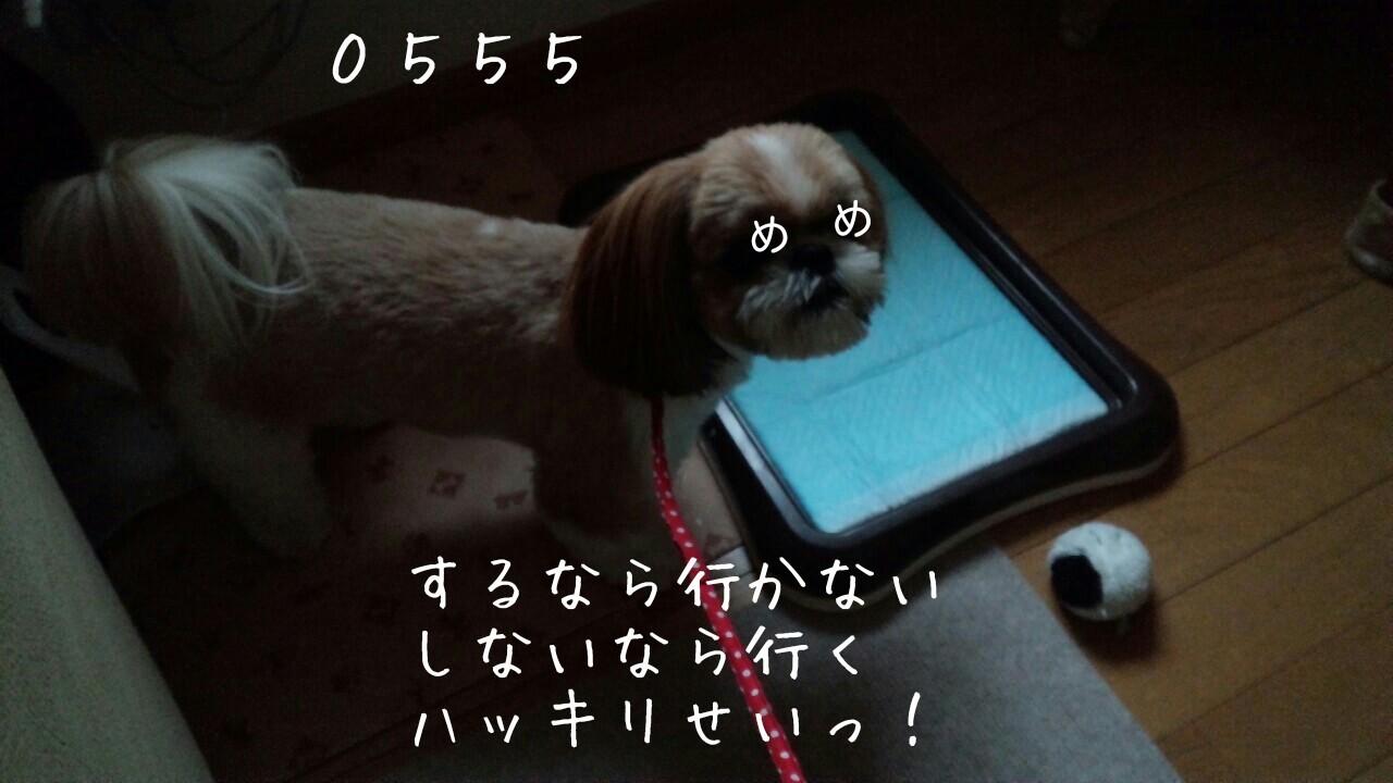 b0306158_19001243.jpg