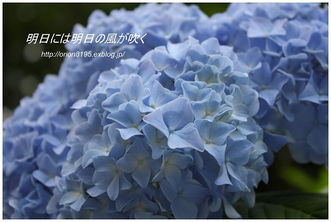 f0361079_1422813.jpg