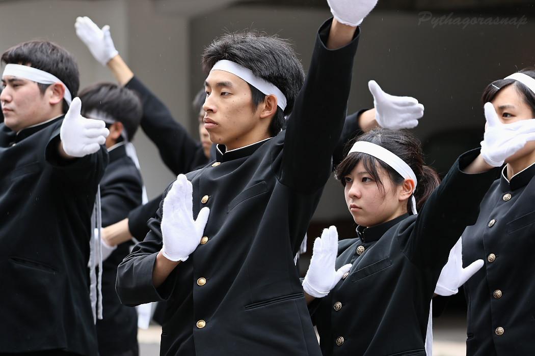 青春応援団 我無沙羅 @ 第13回犬山踊芸祭_c0187584_10311159.jpg