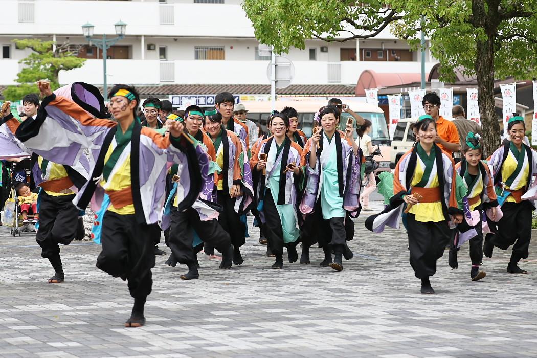 でらおおぶ @ 第13回犬山踊芸祭_c0187584_7472044.jpg