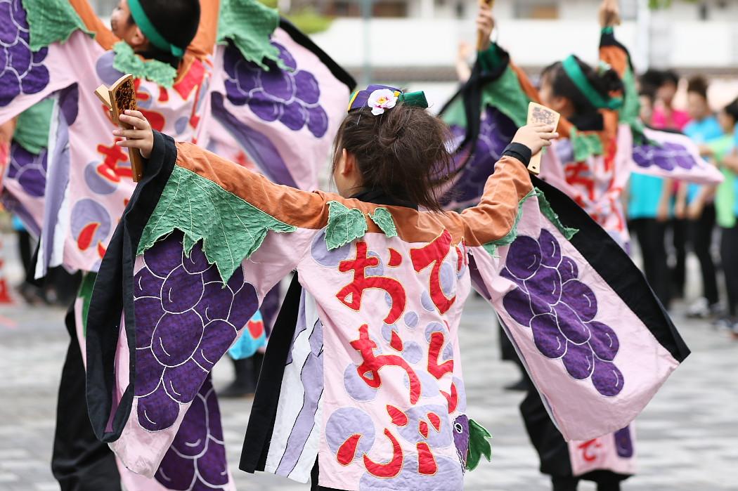 でらおおぶ @ 第13回犬山踊芸祭_c0187584_7473041.jpg