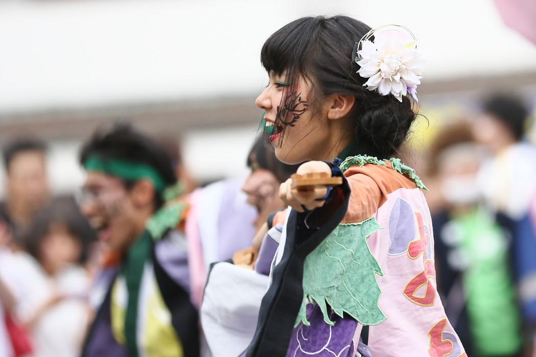 でらおおぶ @ 第13回犬山踊芸祭_c0187584_7481153.jpg