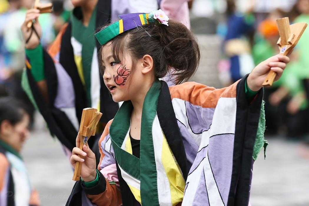 でらおおぶ @ 第13回犬山踊芸祭_c0187584_7482773.jpg