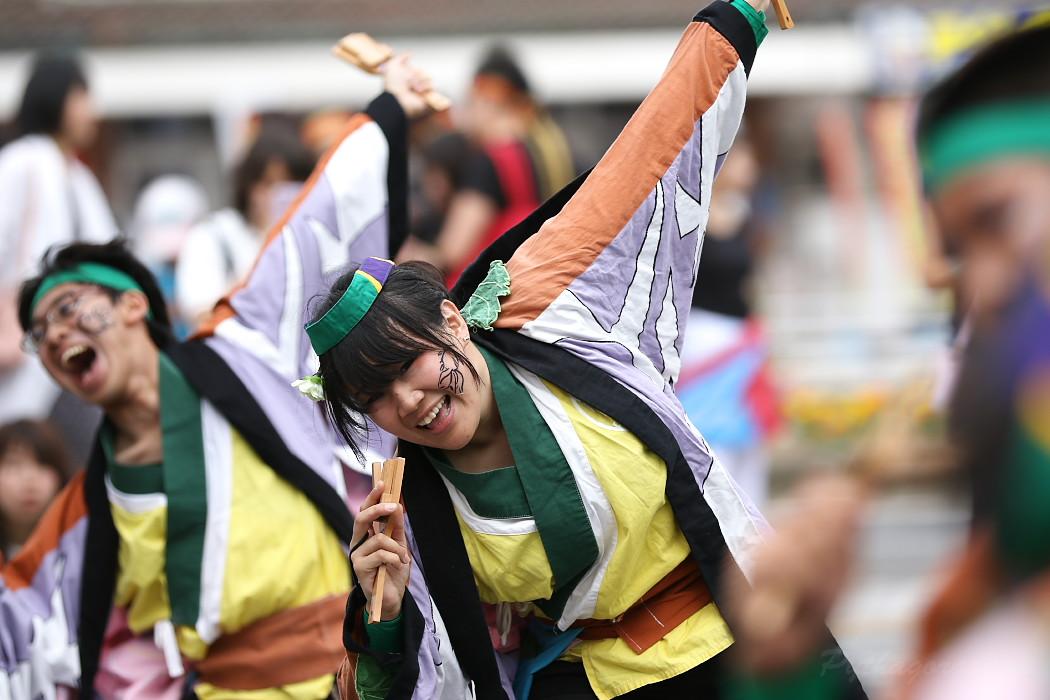 でらおおぶ @ 第13回犬山踊芸祭_c0187584_7483460.jpg